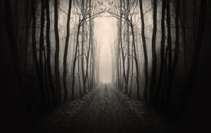 scary_path1